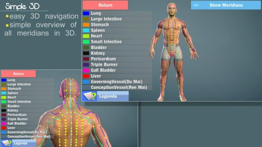 3D Acupuncture&meridians;(Full) screenshot 6