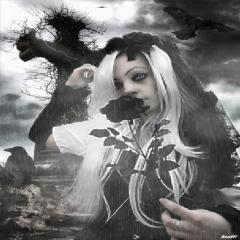 Gothic Girl Black Rose Live Wallpaper Background 601