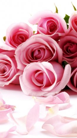 Wallpaper Animasi Bunga Mawar Indah Gambar 2 0 Unduh Apk Untuk