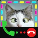 Bloqueador de llamadas, identificador de llamadas y pantalla de llamadas: identificador de llamadas