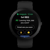 Wear OS by Google Smartwatch (was Android Wear) screenshot 13