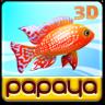 Papaya Fish 3D