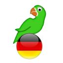 Learn German from scratch