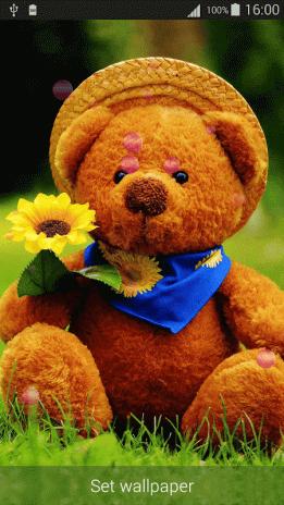 Sweet Teddy Bear Wallpaper 26 Télécharger Lapk Pour Android Aptoide