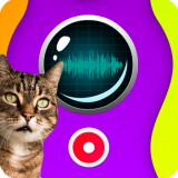 Cat Speaker Icon