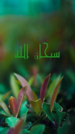 Fond écran Islamique Hd 2014 1 3 Télécharger L Apk Pour