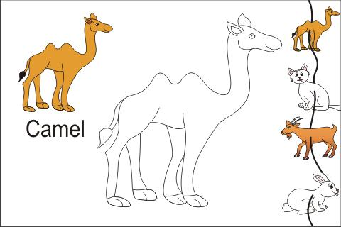 kids trace domestic animals screenshot 1 - Animal Pictures For Kids To Draw