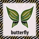 Beautiful Butterflies Game