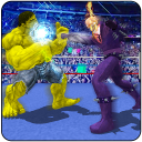 World Superhero Boxing Tournament