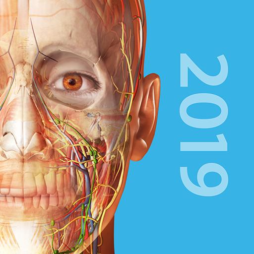 Human Anatomy Atlas 2019:Complete 3D Human Body