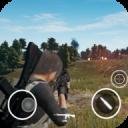 Mobile PUBG Battle Royal FPS