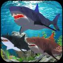 Corse d'acqua di animali squali
