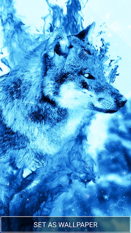 Ice Fire Wolf Wallpapers And Backgrounds Download Apk Png 261x464 Wallpaper Husky Blue Anime