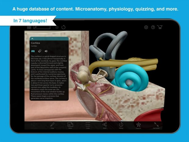Human Anatomy Atlas 2017 2017139 Download Apk For Android Aptoide