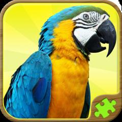 Juegos De Rompecabezas Gratis 2 19 Descargar Apk Para Android Aptoide