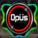 DJ Opus Viral 2021