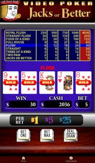 Astraware Casino HD screenshot 20