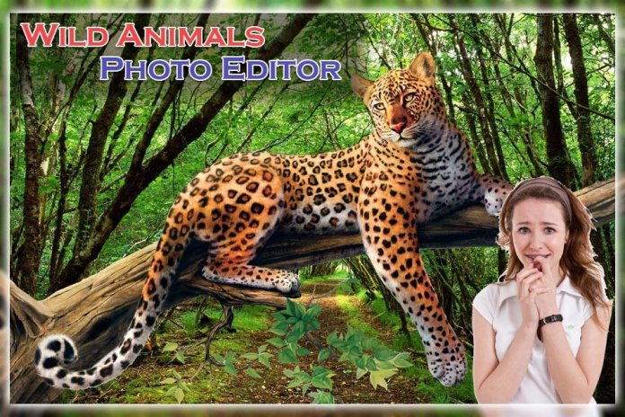 Wild Animal Photo Editor 1 3 Download Apk For Android Aptoide