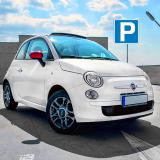 Speed Car Parking Simulator Icon