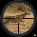 鹿 狩猎 -  狙击兵 射手