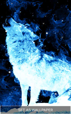 Ice Fire Wolf Wallpapers And Backgrounds Screenshot 6