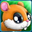 Hamster  Runner