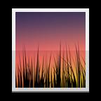 Selettore sfondo animato Icon