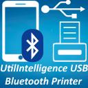 Mobile Printer USB Bluetooth