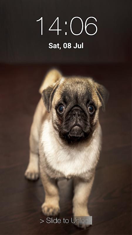 sistem perdagangan berbasis rsi anjing dari strategi opsi dow