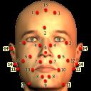 Massage Body Spots