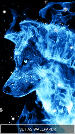 Ice Fire Wolf Wallpapers And Backgrounds Screenshot 2