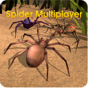 Spider World Multiplayer