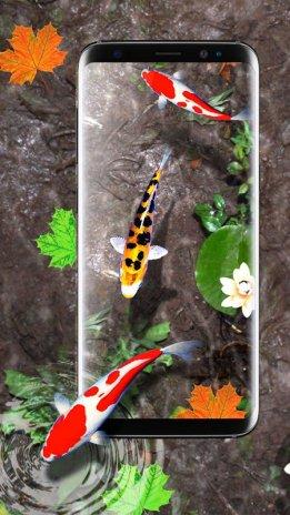 Download 7300 Wallpaper Animasi Ikan Bergerak Untuk Android Foto Gratis Terbaru