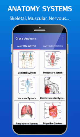 Gray\'s Anatomy - Atlas 3.3 Download APK for Android - Aptoide