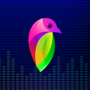 Lovi - Video Maker   Beat Video Maker