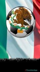soccer mexican league screenshot 16
