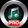 Icona Music Player Pro