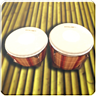 Bongo Drums (djembae, bongo, conga, percussion)