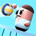 Head Volleyball Champion