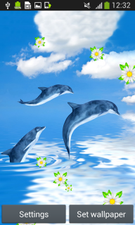 Dolphins Live Wallpapers screenshot 3