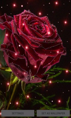 Magical Rose Live Wallpaper 2 Download Apk For Android Aptoide