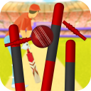 Cricket Classic Game