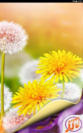 Unduh 4400 Koleksi Wallpaper Bunga Hp Android Gratis