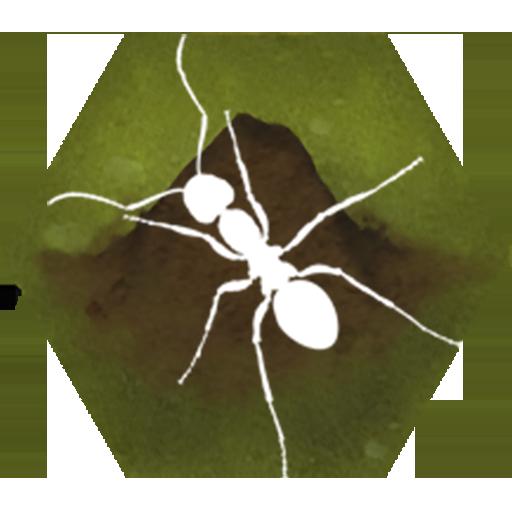 Finally Ants