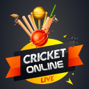 Cricket Online Play with Friends
