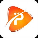 Pro Digital Icon