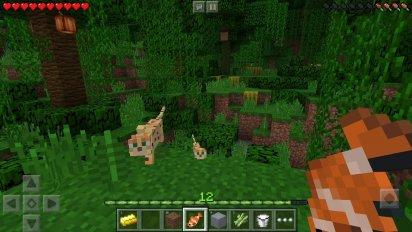 minecraft pocket edition screenshot 7