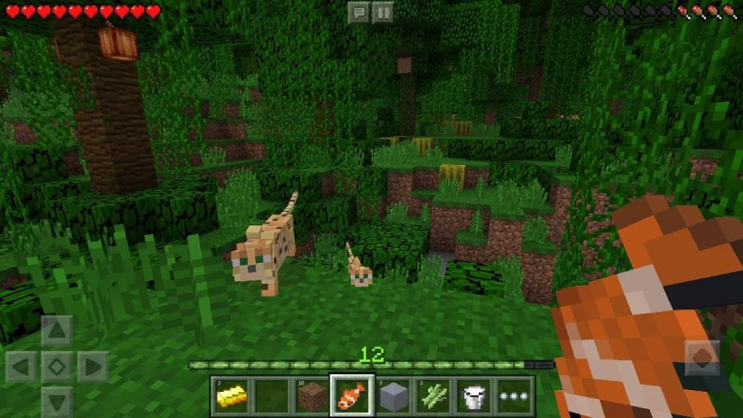 ... minecraft pocket edition screenshot 10 ...