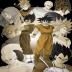 Dragon Ball Comics