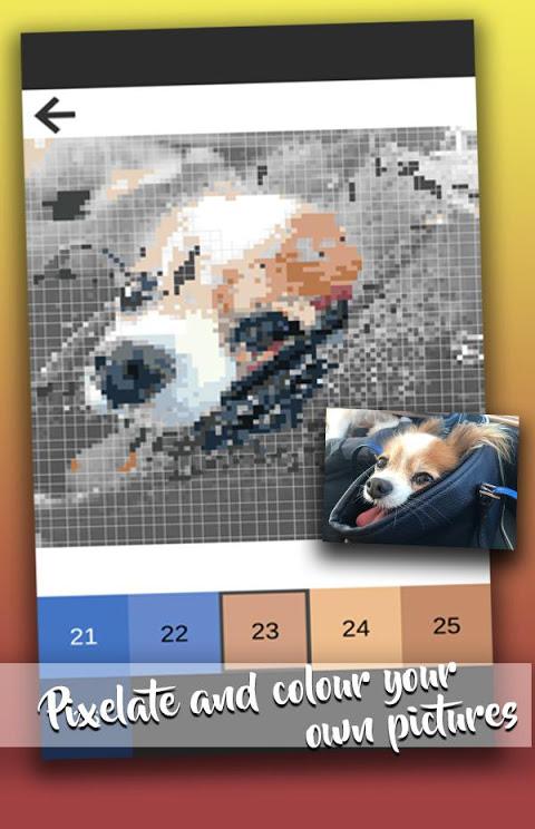 Color By Numbers Pixel Art Sandbox Coloring Book screenshot 1